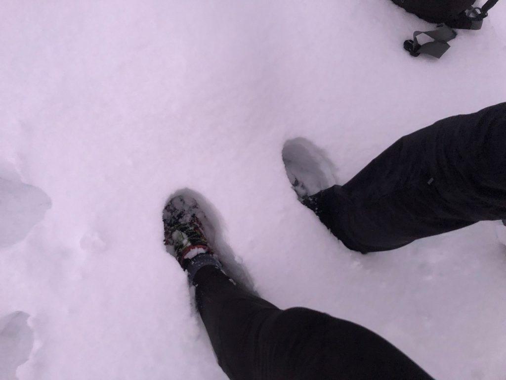 Franschhoek snow 2020